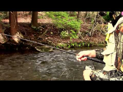 Tips for Better Trout Fishing