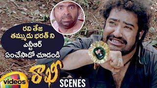 Jr NTR Takes Revenge on Ravi Teja's Brother Bharath | Rakhi Telugu Movie Scenes | Ileana | Charmi - MANGOVIDEOS