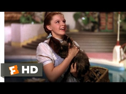 We're Not in Kansas Anymore Scene - The Wizard of Oz Movie (1939) - HD