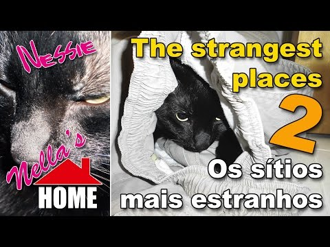 The strangest places 2 -- Os sítios mais estranhos 2 (By Nella's HOME)