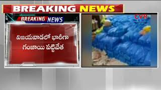 Task Force Police Busted Ganja Gang in Vijayawada | CVR NEWS - CVRNEWSOFFICIAL