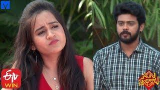 Naalugu Sthambalata Serial Promo - 30th January 2020 - Naalugu Sthambalata Telugu Serial - MALLEMALATV