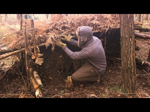 Tree Root Survival Shelter - Fast Build, Minimal Tools
