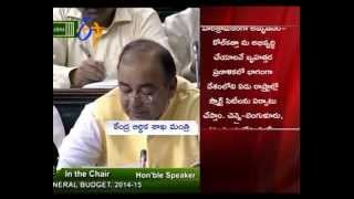 What Andhra & Telanga Got In Union Budget 2014 - ETV2INDIA