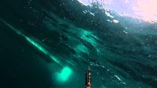 ◄|شاهد| غواص يشتبك مع سمكة قرش بيضاء ضخمة بالعصا: ضربة واحدة أنقذت حياته - المصري لايت