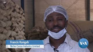 Traditional Cocoa-Exporter Ghana Pushes for More Local Chocolate - VOAVIDEO