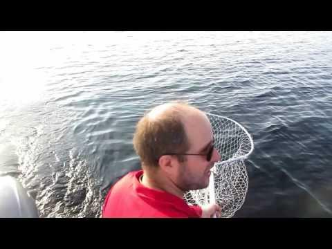 рыбалка на дорожку на ладоге