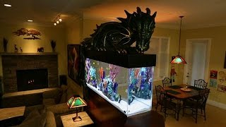Magical Dragon Fish Tank - ANIMALPLANETTV