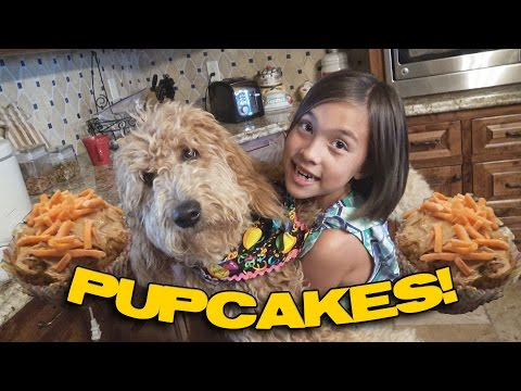 HOW TO MAKE PUPCAKES!!! Cooking With Jillian