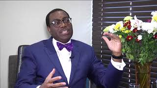In conversation with Akinwumi Adesina on green power, foreign investment - ABNDIGITAL