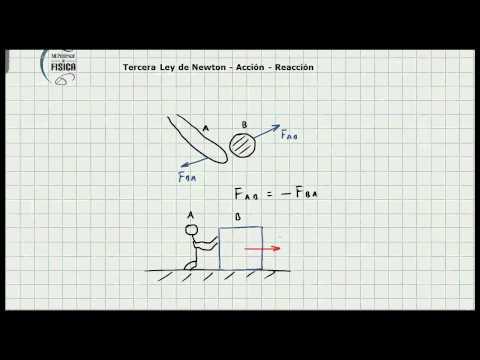 Tercera Ley de Newton - Ley de Accion Reaccion - Concepto Basico - Video 107