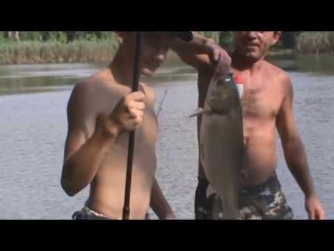 рыбалка в запорожье на толстолоба