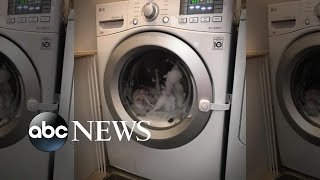 Parents say toddler got stuck in washing machine - ABCNEWS