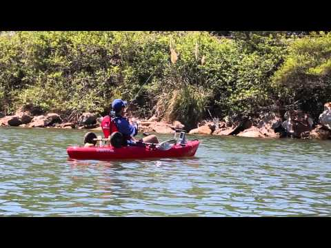 Kayak Fishing Tips: Gear Selection And Finding Fish
