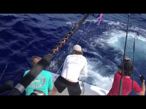 Daytime swordfishing in the Florida Keys on board Caribsea Charters 520lbs