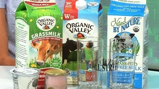 What's 'Grassmilk'? Is It Better for You? - WSJDIGITALNETWORK