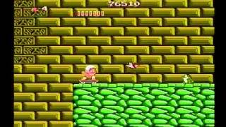 Adventure Island [NES] :: SPEED RUN (0:43:53) by ktwo [Eu Ver.]