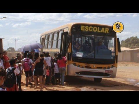 Mães da Estrutural denunciam precariedade em ponto de ônibus escolar