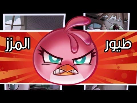 عالماشي : مزز الطيور الغاضبة! - Angry Birds Stella