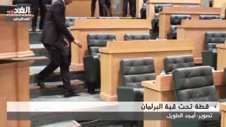 بالفيديو: مطاردة قط اقتحم مجلس النواب الأردني.. وإعلامي: لو تركوه يستمع لأحاديث النواب لخرج وحده