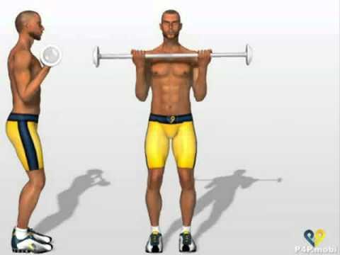 Flexii cu Haltera - Exercitii pentru biceps - pregatit.com