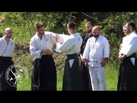 Aikido Ude Garami 2 Nikkyo   SAA Seminar