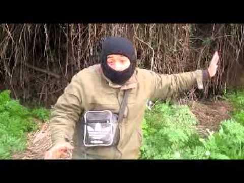 caza de codorniz y tortola, la palma talagante
