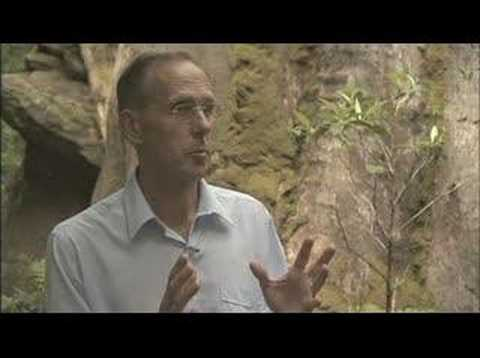 Wild Tasmania - Bob Brown interview