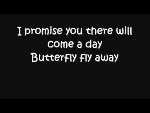 Butterfly Fly Away by Miley Cyrus