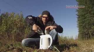 Чистка и ремонт чайников филипс