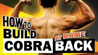 How To Build A Sexy Back At Home (no pull up & rows)