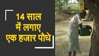 Meet Fakire Lal who planted more than 1000 plants | फकीरे लाल ने 14 साल में लगाए एक हजार पौधे - ZEENEWS