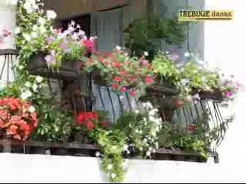 Nagrađeni najljepše uređeni balkoni,dvorišta i prostori