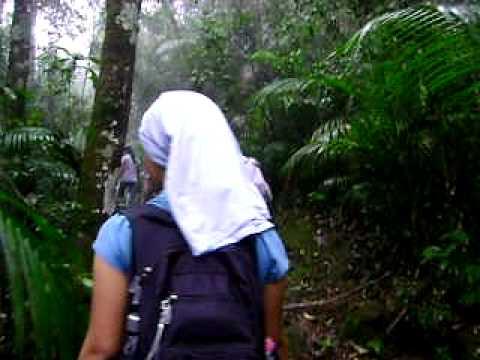M.A. 07-IFRJ-CANP formamdo 2010 no Parque Nacional de Itatiaia ( Trilha )