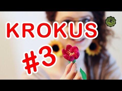 Kwiatki z bibuły #3 - krokus