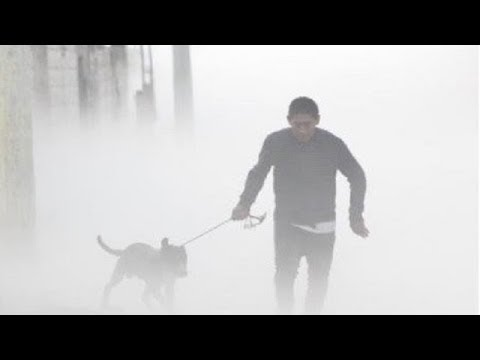 Hombre regresa a salvar a su perro tras fuga de gas en Puebla