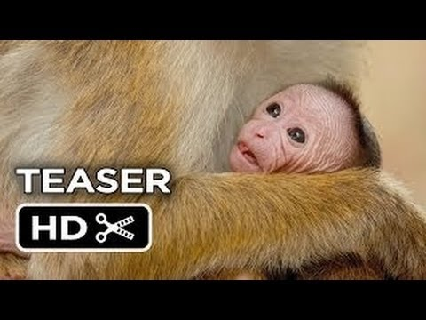 Monkey Kingdom Official Teaser #1 2015   Disneynature Documentary HD