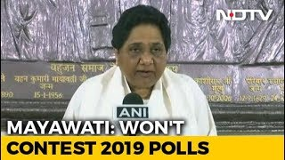 Mayawati Says She Will Not Contest Lok Sabha Elections - NDTV
