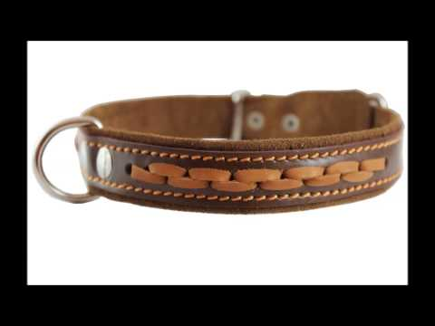 Best Brown Dog Collars - Brown Dog Collars On Sale