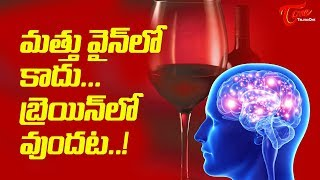 The Extra Kick Is Not Because Of Wine, But - TELUGUONE
