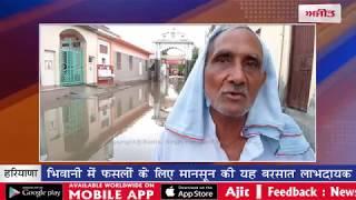 video : भिवानी में फसलों के लिए मानसून की यह बरसात लाभदायक