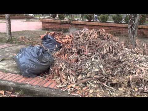 El mal manejo de los residuos sólidos está acabando con el medio ambiente.