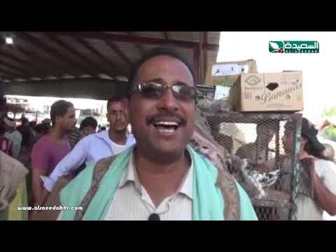 تقرير : سوق الطيور في مدينة جعار بمحافظة أبين (19-4-2019)