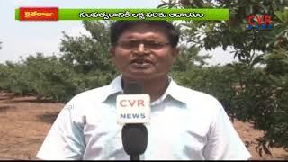 Successstory of Sapota Farming | Srikakulam Dist | Raithe Raju - CVRNEWSOFFICIAL