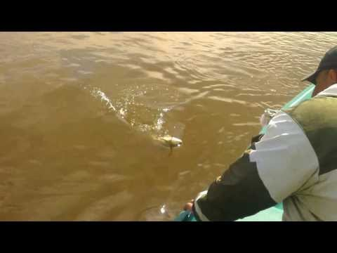 рыбалка на раскатах в июне