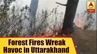 Forest fires wreak havoc in Uttarakhand, locals complain of no action by govt - ABPNEWSTV