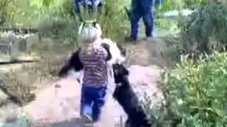 девочка спасла кота