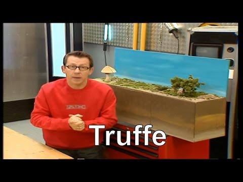 Qu'est-ce que la truffe ? - C'est pas sorcier