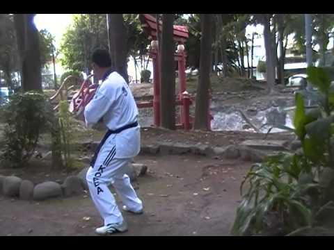 TAEGUK 7 CHILD JANG TAE KWON DO CHENG WOO HOI XOCHIMILCO 2