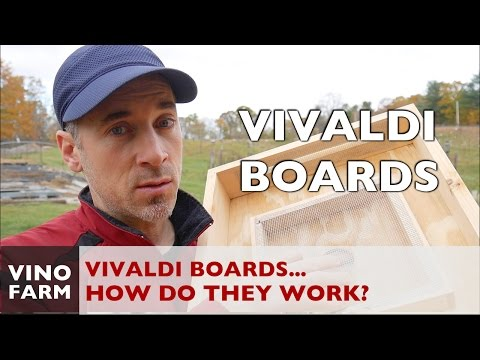 Use a VIVALDI BOARD to overwinter bees!